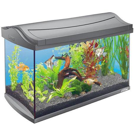 Tetra aquaart аквариумный комплекс