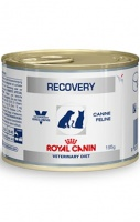 Royal Canin Recovery (Консервы для собак и кошек в период анорексии, выздоровления)
