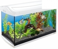 Tetra aquaart led tropical аквариумный комплекс 60 л с led освещением, белый