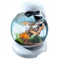 Tetra cascade globe white аквариумный комплекс белый